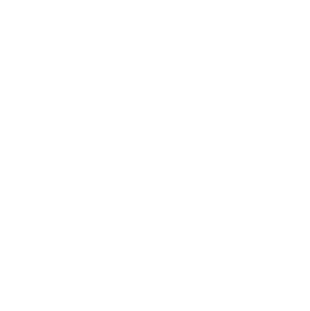 Volkswagen Transporter Rockton минивэн